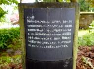 dsc00217